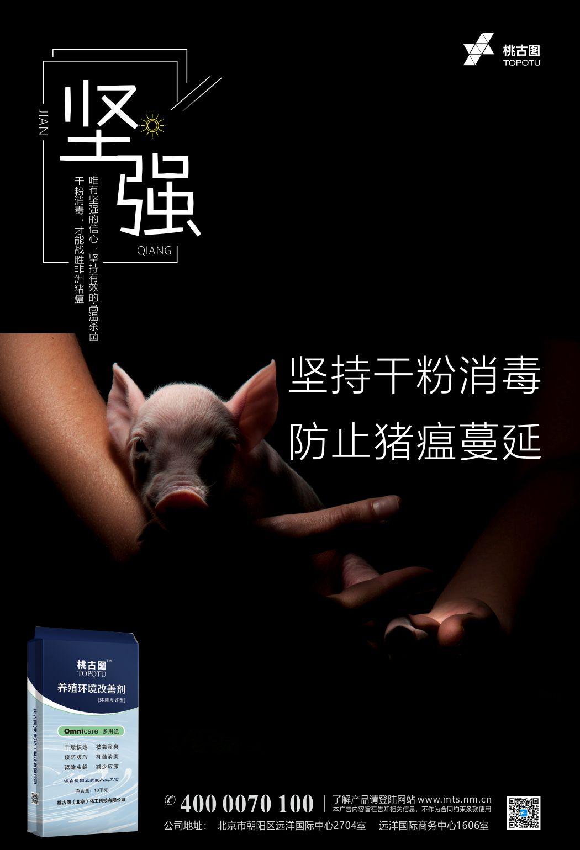 干粉消毒,预防猪瘟